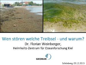 thumbnail of 151203 Weinberger Treibsel Schönberg