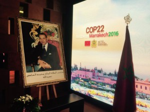 COP22_Show_must_go_on