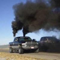 Antropogena utsläpp