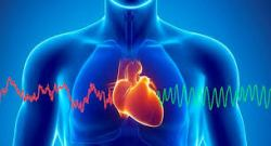 Expertos apuntan a las señales de una peligrosa arritmia cardiaca