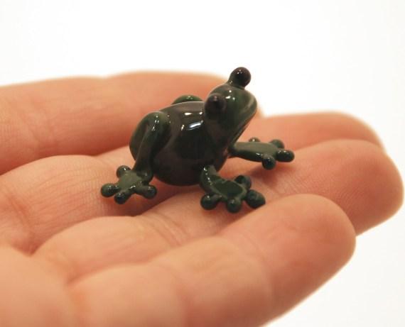 Sapos y ranas: fotografias imagenes