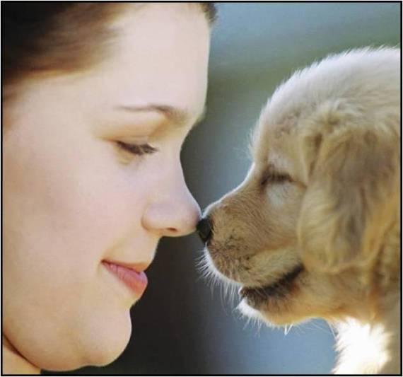 imagen tierna de nena con un cachorro