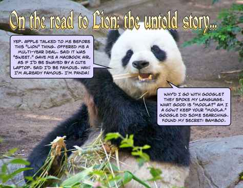 Story of how Google got the Panda code name, leaving Apple with the code name of Lion for Mac OS X