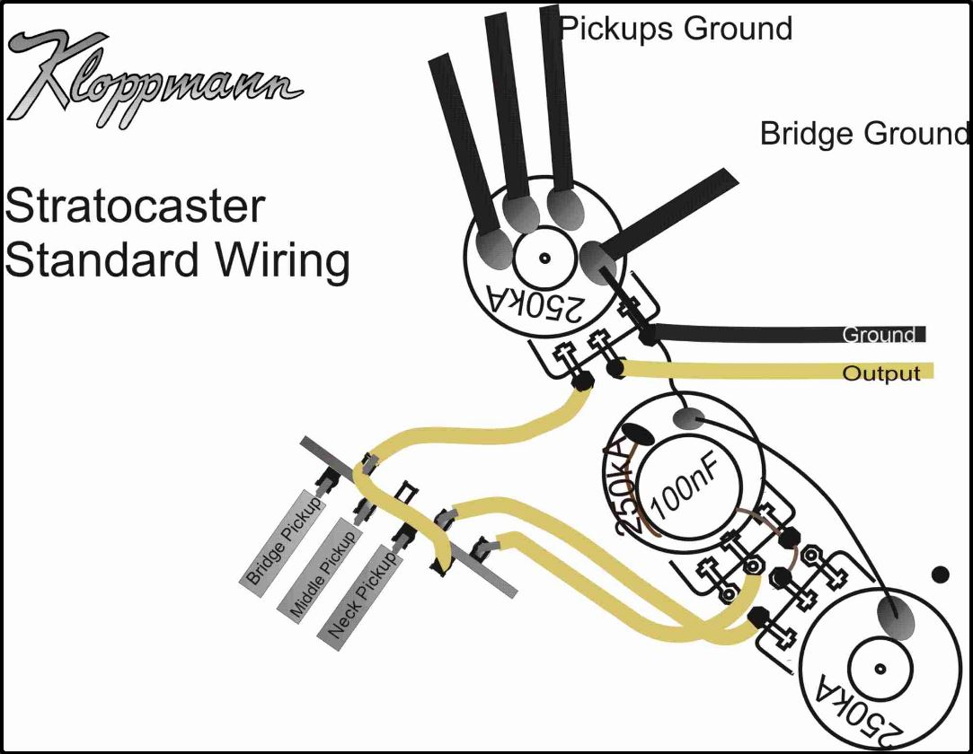 Stratocaster Dummy Pick Up Wiring Diagram