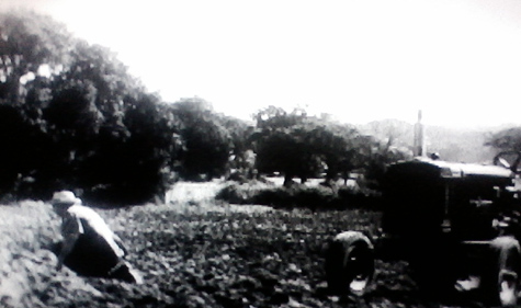 A Farmer out sitting in his field