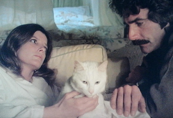 Maggie, Pete, and the cat