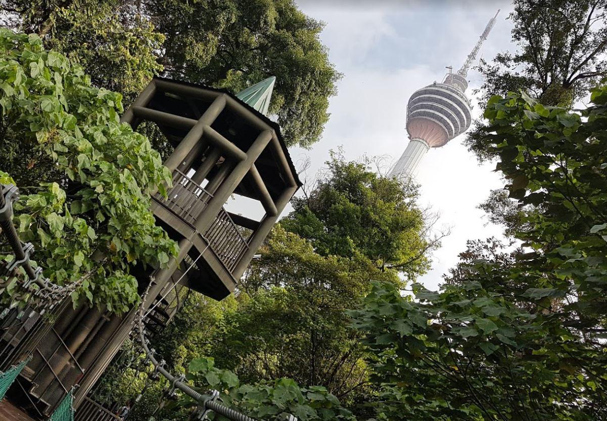 KL-Florest-Eco-Park-Bukit-Nanas-KL-Tower