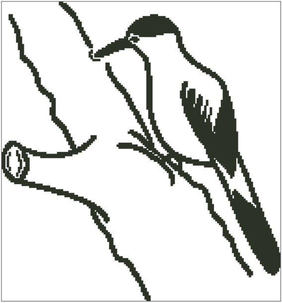 Woodpecker Outline