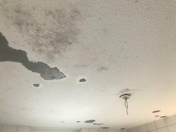 Badkamerplafond  schimmel  structuurverf