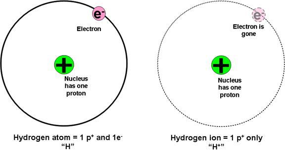 hcl particle diagram