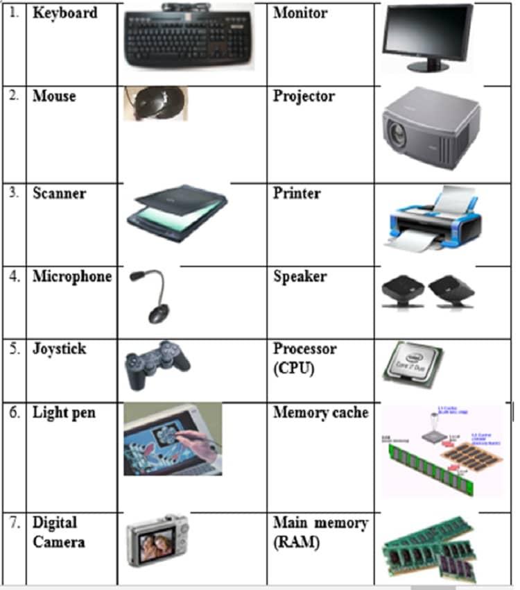 basic hardware components