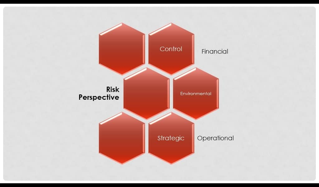 risk perspective in brm