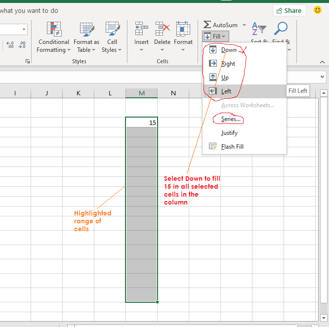 using the autofill to enter data in excel