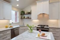 White and Marble Transitional Kitchen
