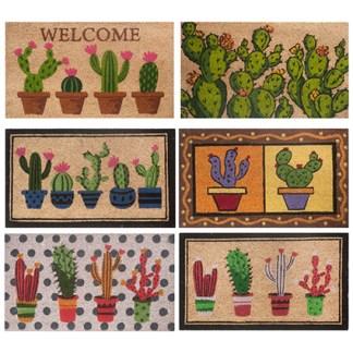Zerbino Cactus Cocco Gomma - KMV Home Store stocKMarket