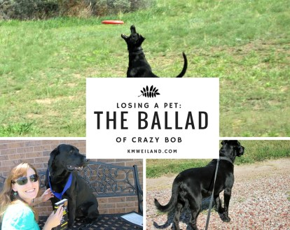 Losing a Pet The Ballad of Crazy Bob