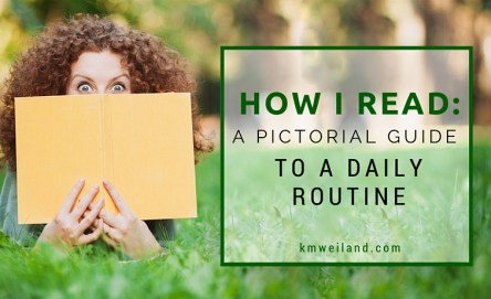 How I Read: A Pictorial Guide to a Daily Routine