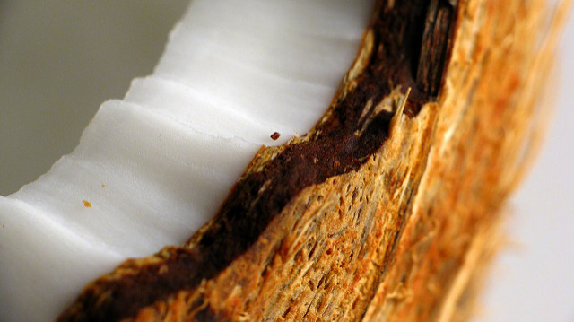 Aktualizováno: 8 tipů na práci s kokosovou moukou jako náhradou klasické při nízkosacharidovém/keto pečení – jak to udělat, aby se povedlo.