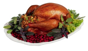 1446214697_turkey%202image