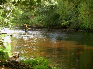 nidd-fly-fishing