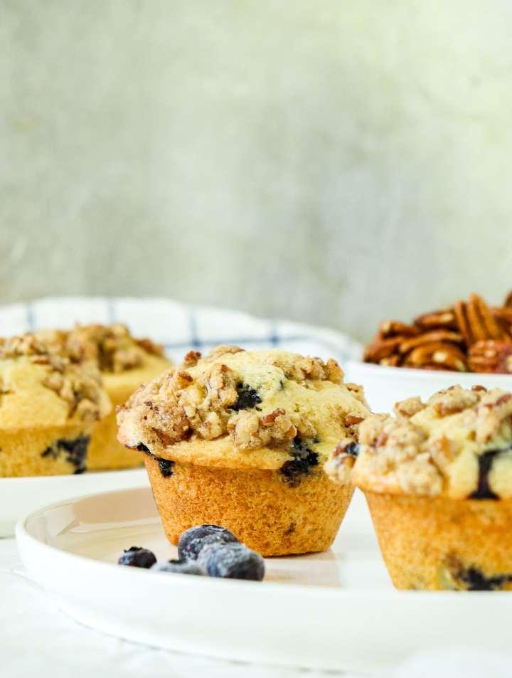 Blueberry Pecan Muffins