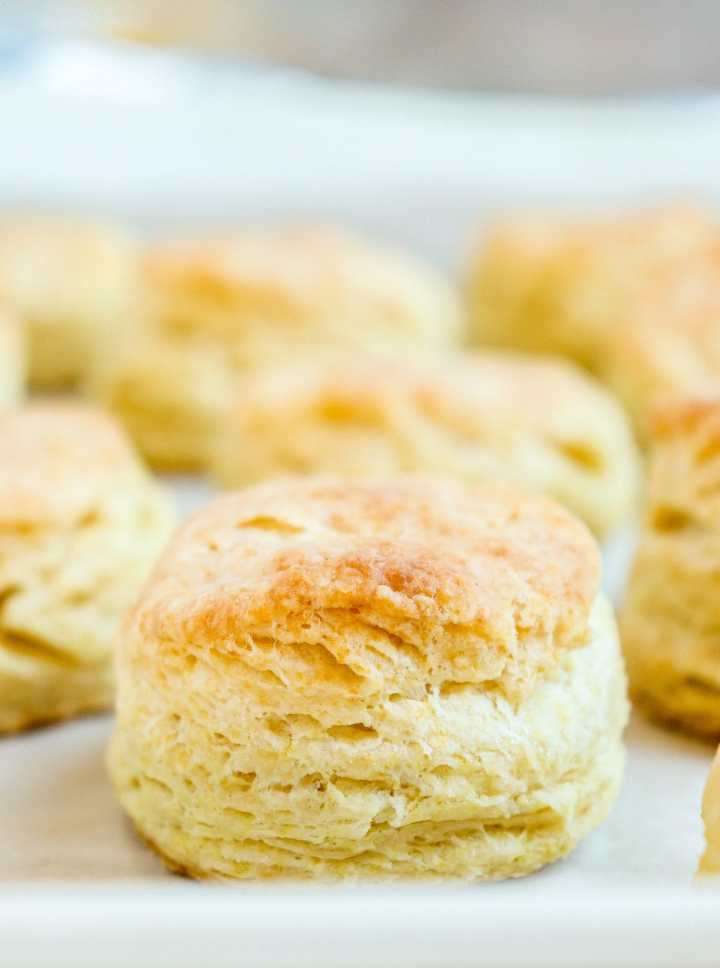 buttermilk biscuit