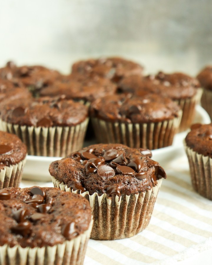chocolate zucchini muffins with chocolate chips on top