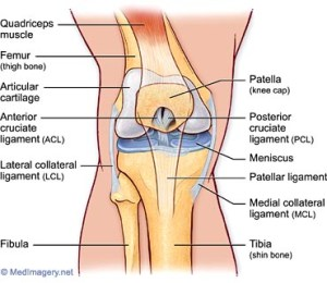 Knee Pain | Knee Pain Diagnosis