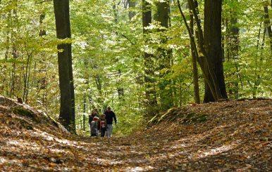 Wandern in Buckow und Umgebung