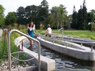 Feldberg Kneipp Wassertretbecken