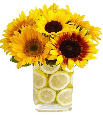 Clinton Florist  Oak Ridge Florist  Knoxville Flowers  Clinton Flower Shop TN