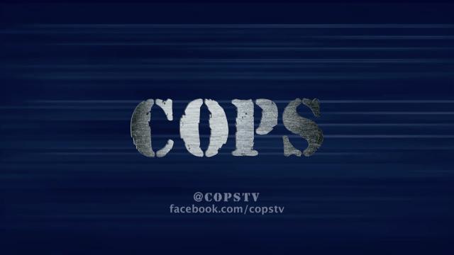 COPS, Fox Television