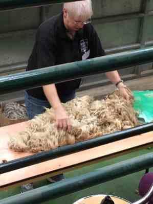 Sue Blacker gives a talk on fleece sorting