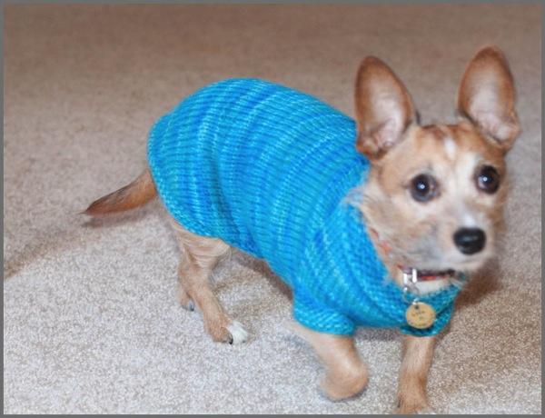 Mountain Sweater 5b