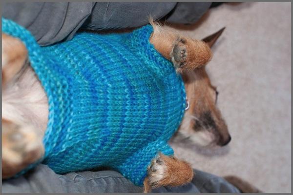 Mountain Sweater 6b