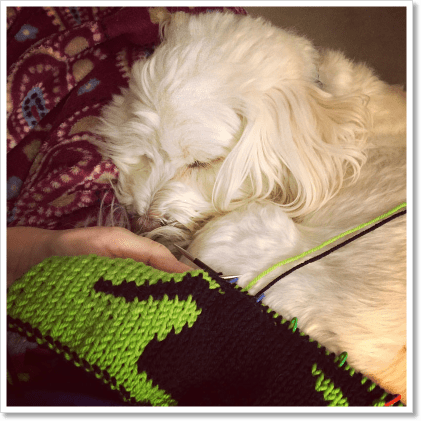 Night Knitting