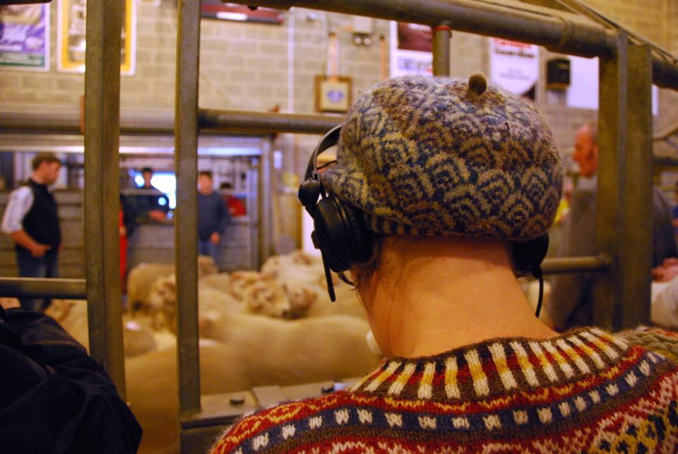 recording the sounds of sheep in the auction mart in Shetland during Wool Week 2013