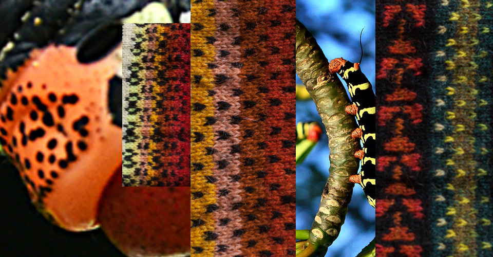 Irregular dots on the caterpillar's head, dots and greens on the branches on which the caterpillar crawls