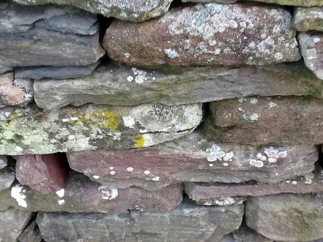 Helen's dry stone wall