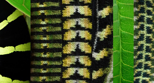 Explorations of irregular caterpillar stripes and leaf structures in stranded colourwork