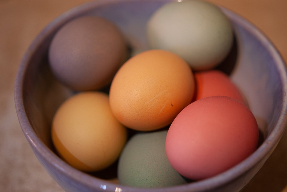 Hens' eggs dyed with special egg dyes, so they are beautiful pastel rainbow shades