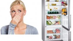 Elimination Of The Smell In Fridge