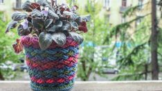 Dressing Your Flower Pot with Knitted Dresses