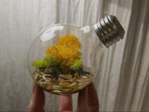 making-a-flower-pot-out-of-light-bulb-4