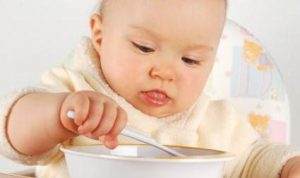 baby food guideline1
