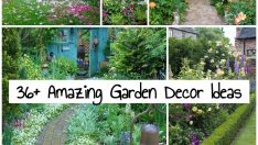 Amazing Garden Decor Ideas +36