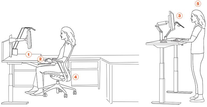 Office Ergonomics Sitting Vs Standing. eureka sit stand