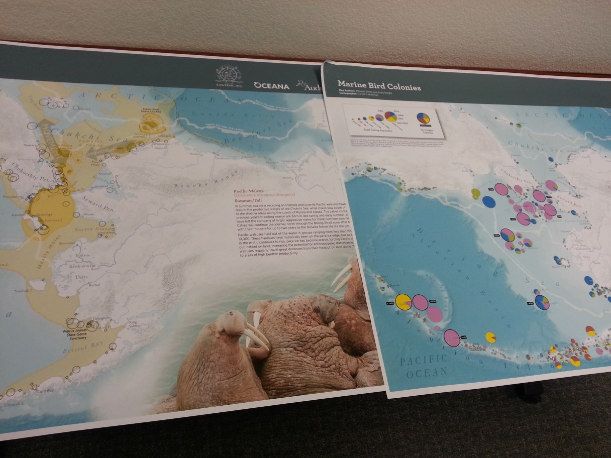 Some samples from the newest ecological atlas of the Beaufort, Bering, and Chukchi Seas. Photo Credit: Davis Hovey, KNOM (2017)