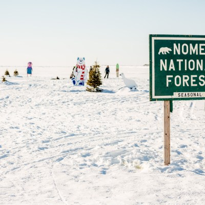"""Nome National Forest"" sign stands on sea ice with scattered trees and painted decorations behind."