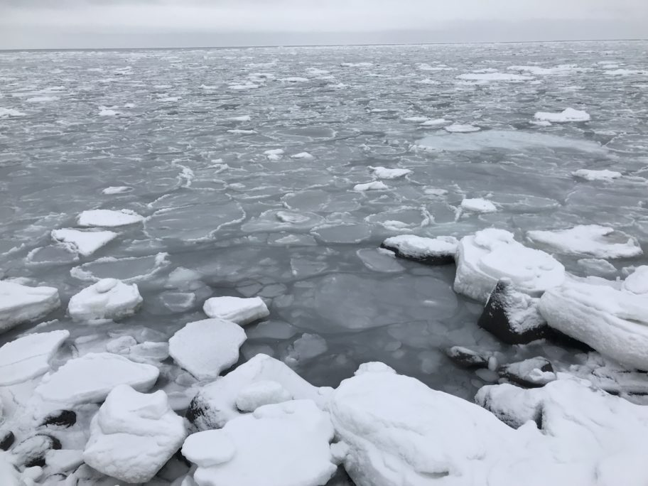 Thin ice and open water along the coast of Savoonga in late March 2018.